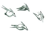 umyu_40_umyus_voladores